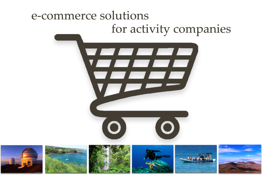 Activity Agent E-Commerce